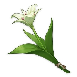 セシリアの花