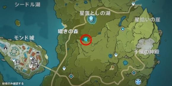 囁きの森宝箱4
