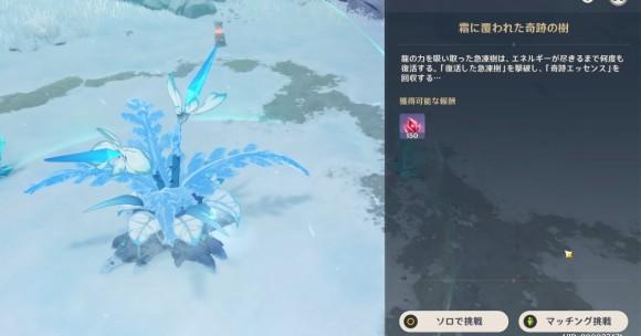 復活した急凍樹