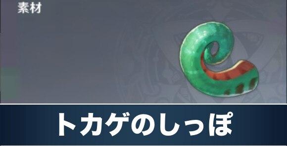 トカゲのしっぽ