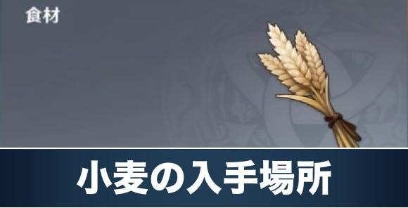 小麦の入手場所と使い道