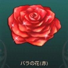 バラの花(赤)