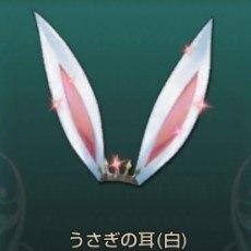 うさぎの耳(白)