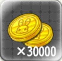 30000コイン