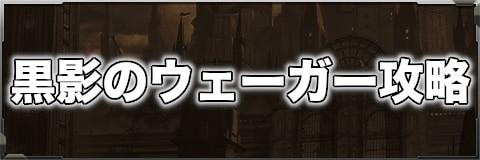 黒影のウェーガー攻略【災厄種】