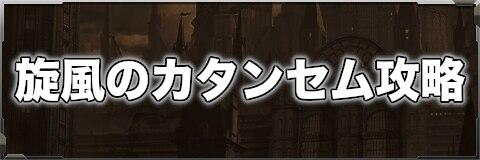 旋風のカタンセム攻略【災厄種】