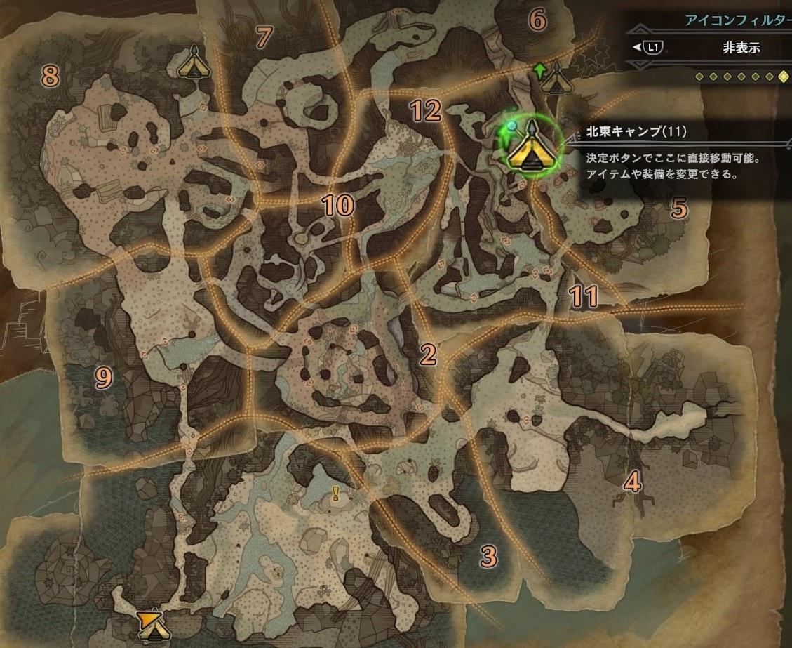 古代樹の森 キャンプ11