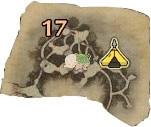 古代樹の森・エリア17