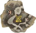 陸珊瑚 エリア9