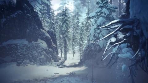 渡りの凍て地