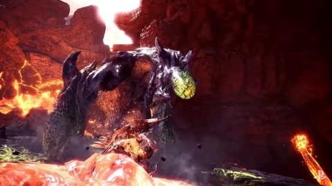 ブラキ頭部粘菌