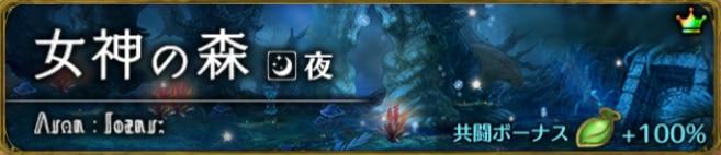 女神の森 夜