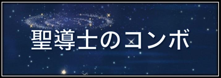 聖導士の立ち回りと回復コンボ【モルフォ追加】
