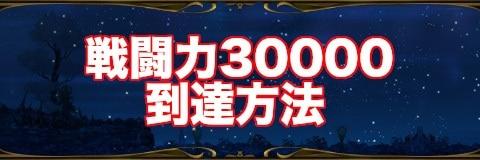 戦闘力30000