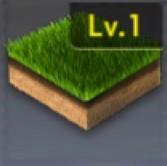 長い天然芝生