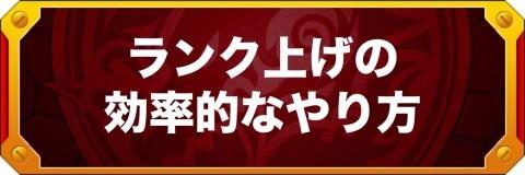 ランク上げの効率的なやり方【ノマダン経験値2倍】
