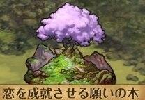 恋を成就させる願いの木