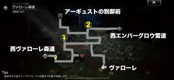 ヴァローレ森道のマップと宝箱