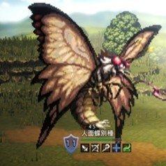 人面蝶別種