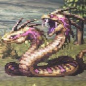 獰猛なフタゴヘビ別種