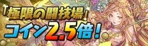 togijyo_coin_2_5x