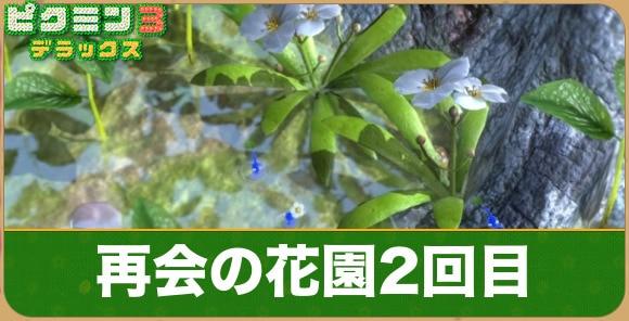 再会の花園2回目