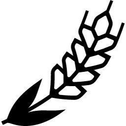 小麦の無料アイコン (1)