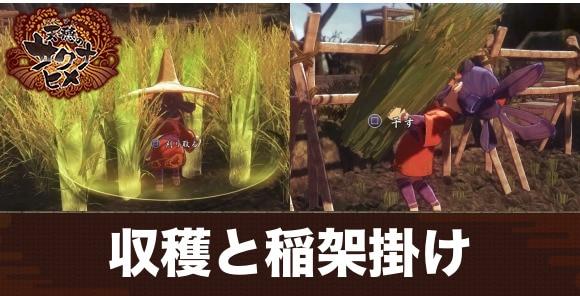 収穫と稲架掛け