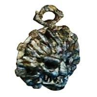 獣王のメダル