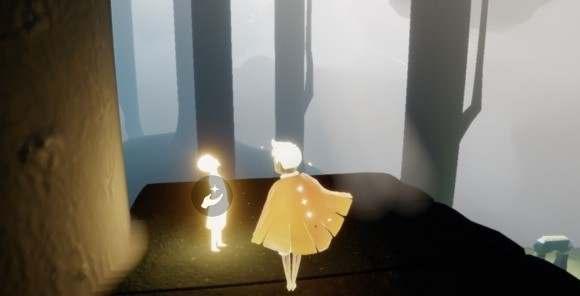 雨林光の翼01