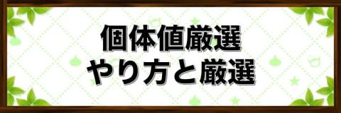 系統ボーナスとステータス補正【個体値厳選】