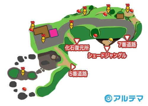 8番道路の出現ポケモンとマップ/入手道具