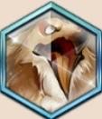 ティアチソウルクリスタル